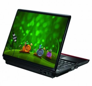 Бизнес на украшении ноутбуков